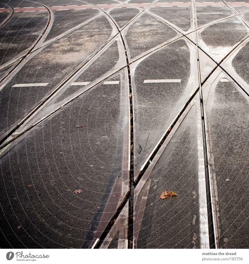 DANZIGER / PRENZLAUER Stadt schön Tod grau Linie Schilder & Markierungen nass Asphalt Gleise Verkehrswege Verkehr Fahrzeug Herbstlaub Straße Kurve feucht