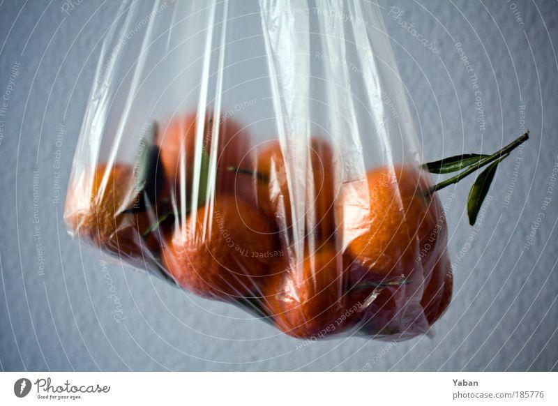 Agent Orange Pflanze Ernährung Lebensmittel Gesundheit orange Frucht frisch Dekoration & Verzierung Duft genießen Zweig Vitamin Tüte Plastiktüte Zitrusfrüchte