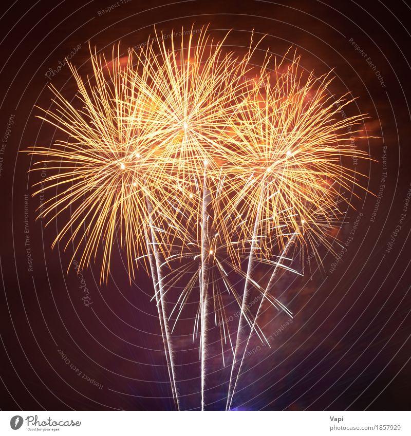 Rote bunte Feuerwerke Freude Freiheit Nachtleben Entertainment Party Veranstaltung Feste & Feiern Weihnachten & Advent Silvester u. Neujahr Show Himmel