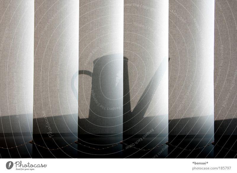 büromuster grau leuchten Schönes Wetter Dinge Kontrolle vertikal Symmetrie Arbeitsplatz Wetterschutz Alltagsfotografie Gießkanne Jalousie Ordnung Schutz Ordnungsliebe Bürofenster