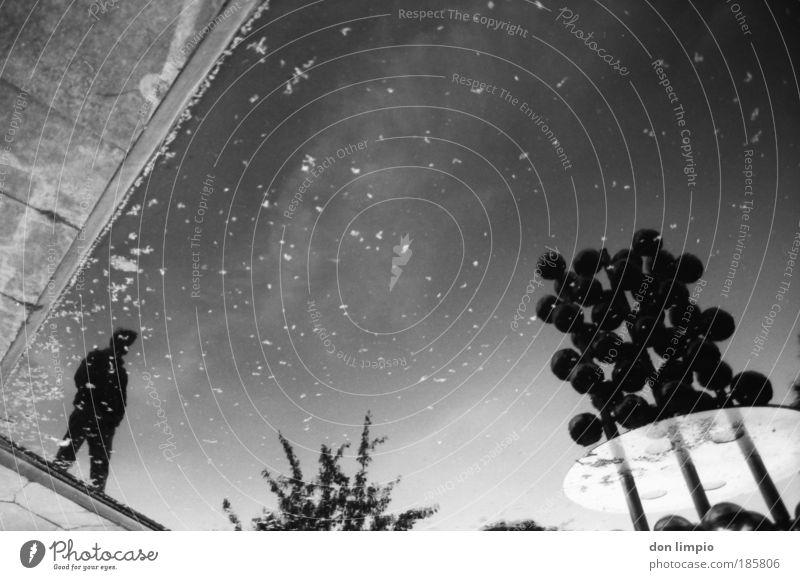 planten un blomen Mensch Wasser Himmel schwarz dunkel Garten Park Kunst Insel stehen analog entdecken Schönes Wetter Zeit