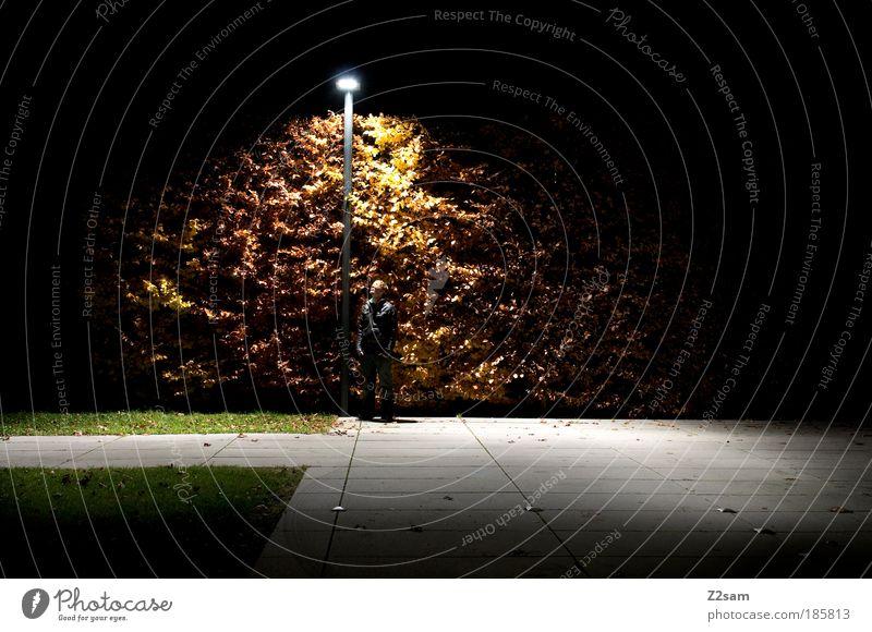 Ja ist denn heut` scho Weihnachten? Baum Stadt ruhig Erwachsene dunkel Umwelt Nacht Park glänzend maskulin modern ästhetisch außergewöhnlich stehen Coolness