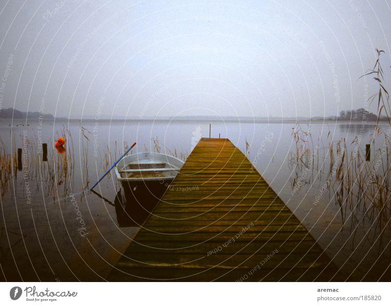 Ein Tag am See Natur Wasser ruhig Umwelt Landschaft Herbst grau Wasserfahrzeug Seeufer Anlegestelle Schleswig-Holstein schlechtes Wetter Ruderboot