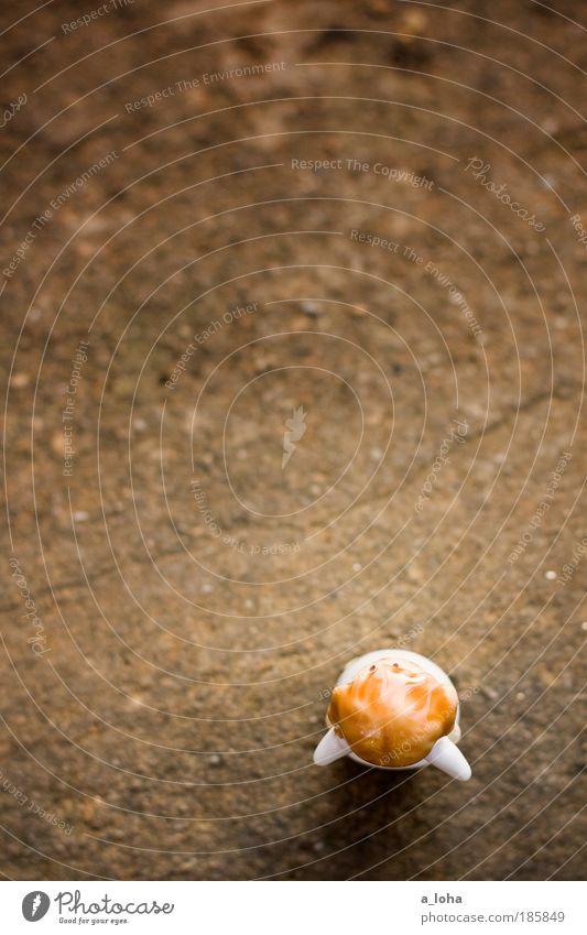 auf der suche nach den sternschnuppen Leben Gefühle träumen Stein Wege & Pfade warten klein Mensch frei Hoffnung stehen Flügel fantastisch Unendlichkeit außergewöhnlich Zeichen