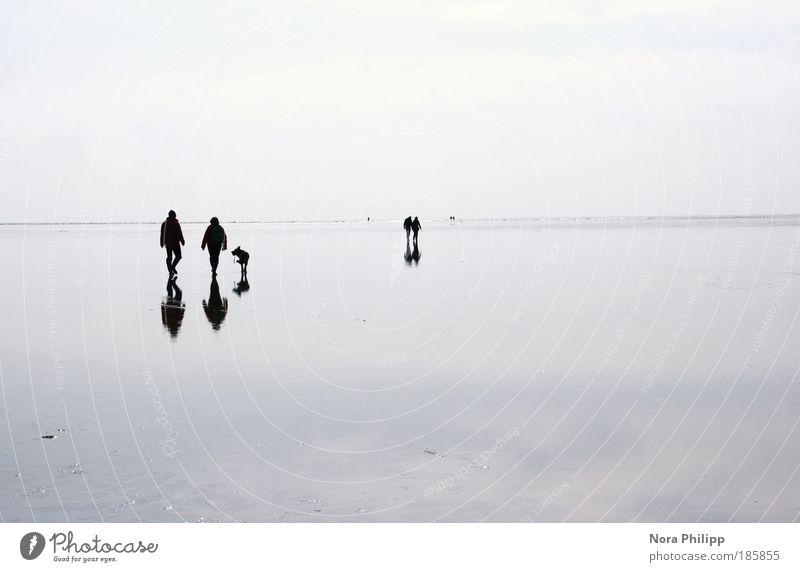 mirror ruhig Mensch Freundschaft Paar Partner Leben 4 Umwelt Natur Landschaft Urelemente Luft Wasser Klima Küste Strand Nordsee wandern blau Sympathie