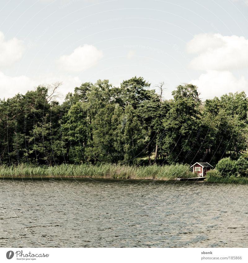 gemütlich Umwelt Natur Landschaft Wasser Himmel Wolken Sonne Sonnenlicht Sommer Schönes Wetter Baum Bucht See genießen Glück schön Schweden Einsamkeit Farbfoto