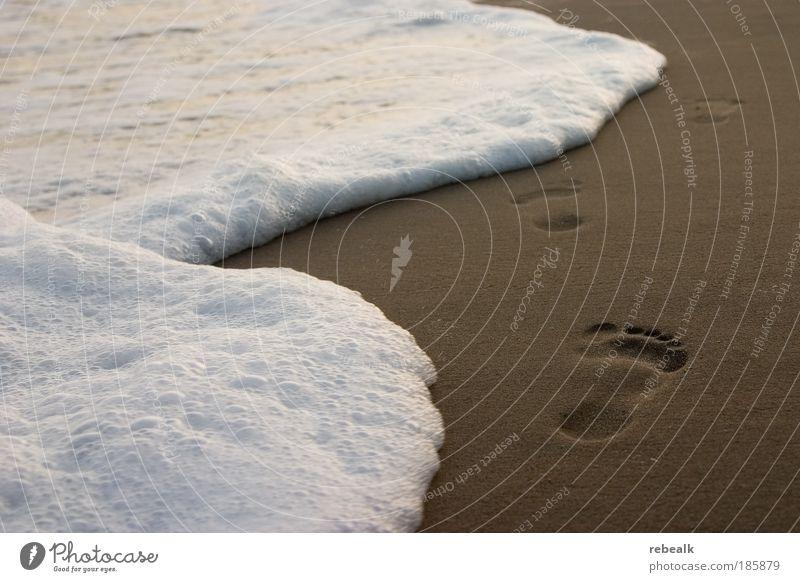 Spuren im Sand Ferien & Urlaub & Reisen Sommer Meer Strand Einsamkeit ruhig Erholung Freiheit Küste träumen Fuß Zufriedenheit Wellen laufen Tourismus Spuren