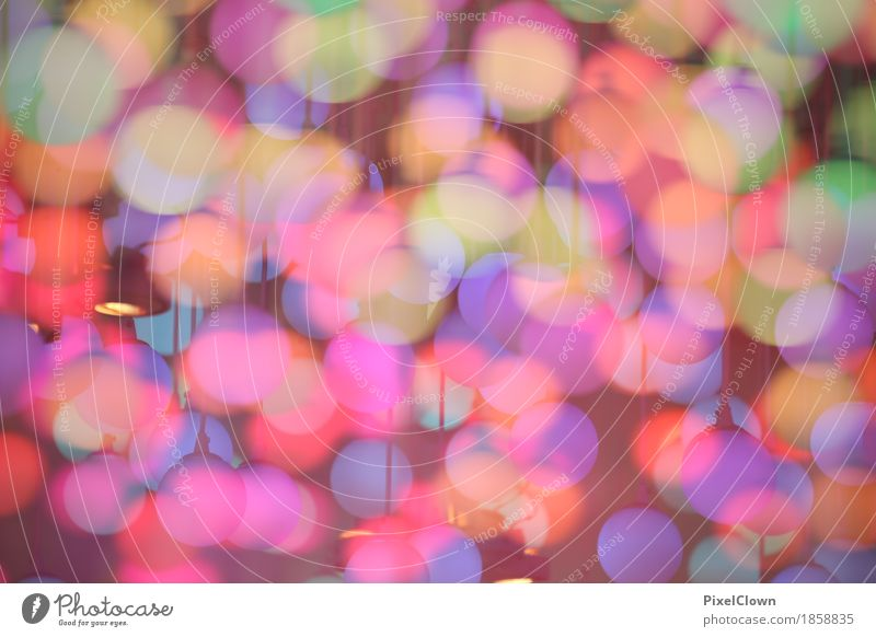 Bunte Welten Lifestyle elegant Stil schön Häusliches Leben Nachtleben Party Club Disco Feste & Feiern Karneval Halloween Weihnachten & Advent