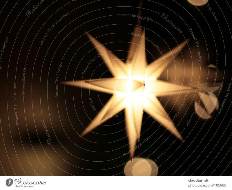 hanuta-Stern Dekoration & Verzierung Zeichen leuchten ästhetisch hell schön gelb schwarz Vorfreude Warmherzigkeit Erwartung Frieden Tradition Stern (Symbol)