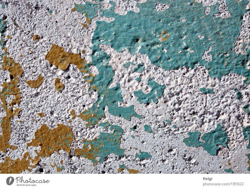 Happy Birthday, Photocase... alt weiß blau gelb Farbe Stein Mauer braun Umwelt Zeit ästhetisch kaputt authentisch einfach Vergänglichkeit außergewöhnlich