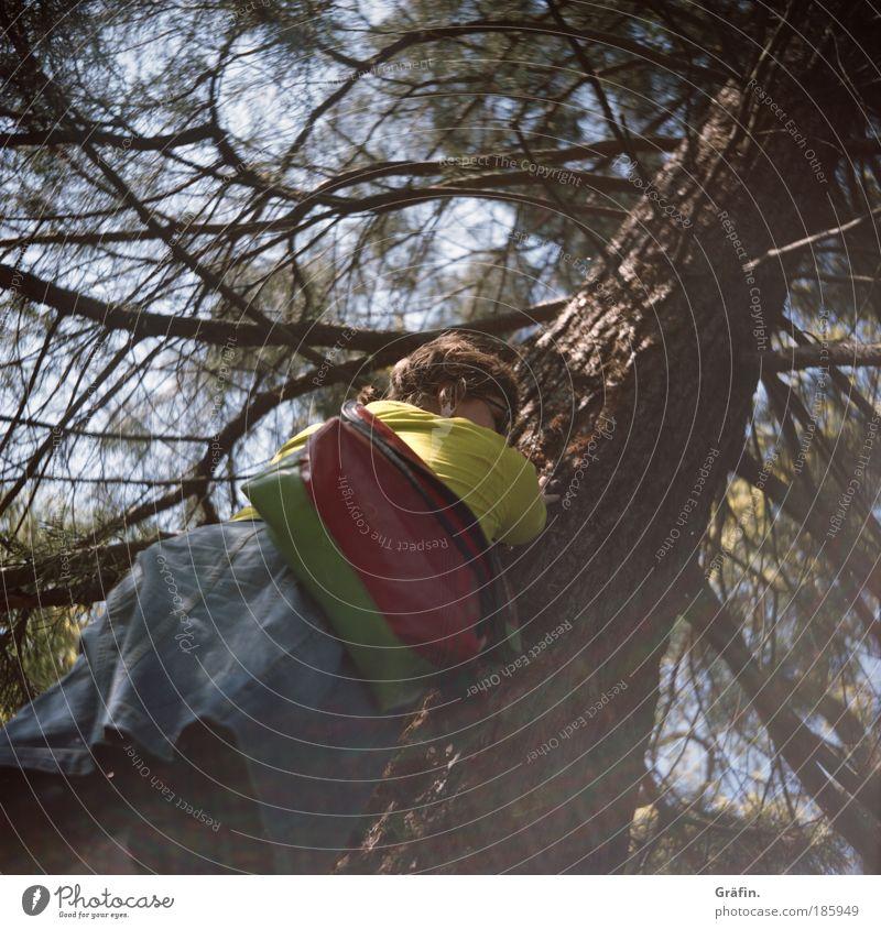 Happy Birthday, Photocase! Natur Baum Pflanze Erholung Landschaft Wärme träumen warten hoch Ast viele Neugier berühren Blühend entdecken Rock