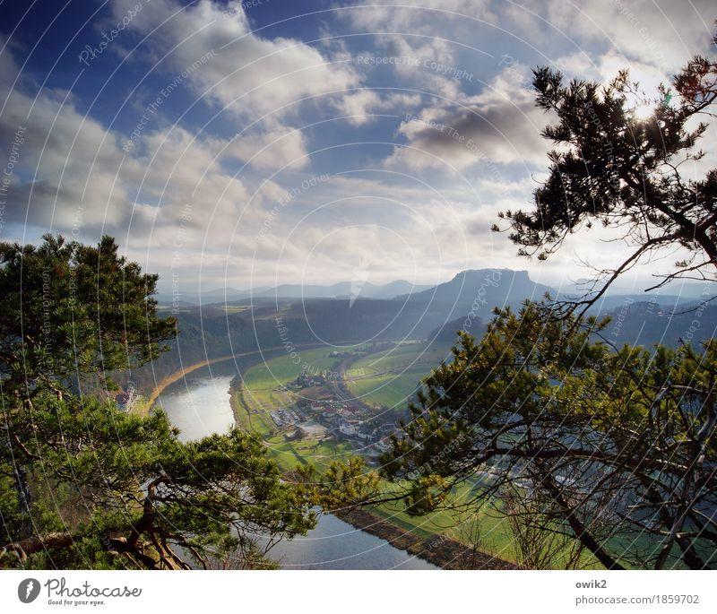 Fernsehen Umwelt Natur Landschaft Pflanze Himmel Wolken Horizont Frühling Klima Schönes Wetter Gras Wildpflanze Kiefer Flussufer Elbe Naturschutzgebiet