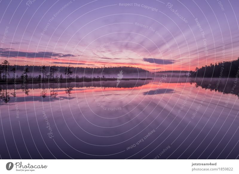 Unglaublicher Sonnenaufgang auf dem Waldsee. Himmel Natur Ferien & Urlaub & Reisen Farbe Sommer schön Wasser Baum Landschaft Wolken Umwelt Leben Liebe Frühling
