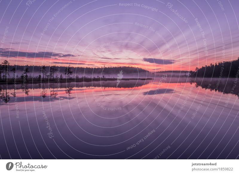 Unglaublicher Sonnenaufgang auf dem Waldsee. Lifestyle Glück schön Leben Angeln Ferien & Urlaub & Reisen Tourismus Freiheit Expedition Sommer Sommerurlaub