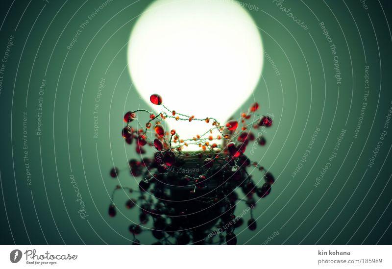lichtspiel (alles liebe) Erholung ruhig Lampe Dekoration & Verzierung Glas leuchten hell kalt Wärme blau grün rot weiß Glühbirne Energieeffizienz Farbfoto