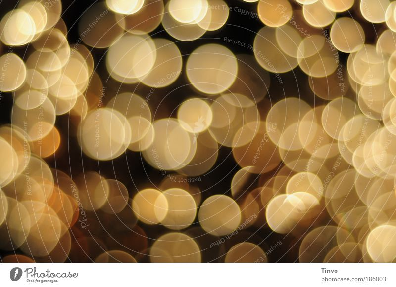 Lichterglanz schön Wärme Leben Beleuchtung Bewegung Feste & Feiern Lampe Stimmung Unschärfe Energiewirtschaft leuchten gold Fröhlichkeit Tanzen Lebensfreude weich