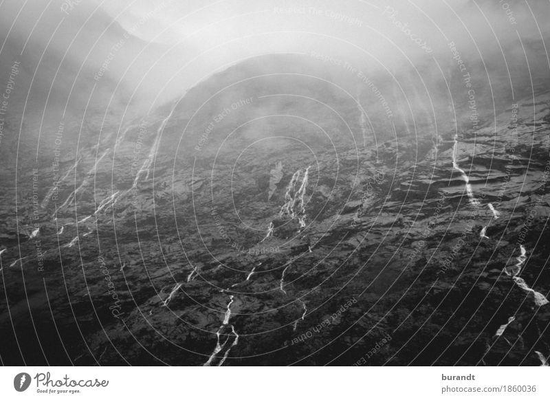 Wasser-Paternoster Umwelt Natur Landschaft Urelemente Wolken Klima Nebel Berge u. Gebirge Milford Sound Gipfel Insel Neuseeland Wasserfall ästhetisch wild