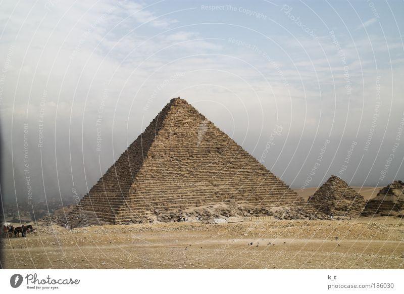 Pyramiden alt Sommer Ferien & Urlaub & Reisen Ferne Tod Religion & Glaube Wüste trocken historisch Sightseeing Sehenswürdigkeit Sommerurlaub Ägypten Pferdekutsche Volksglaube Gizeh