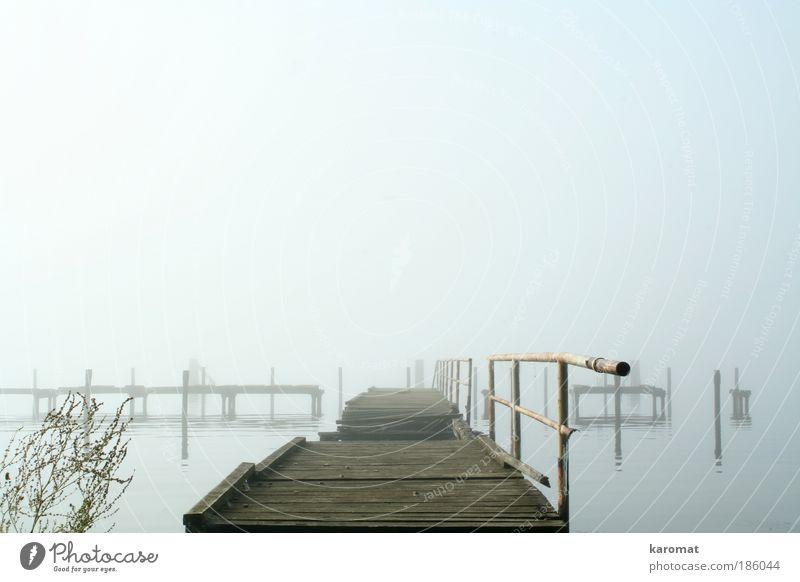 Brücke im Bodden Himmel alt Wasser Einsamkeit Landschaft Herbst Holz grau Küste Traurigkeit Nebel Insel Brücke kaputt trist Trauer