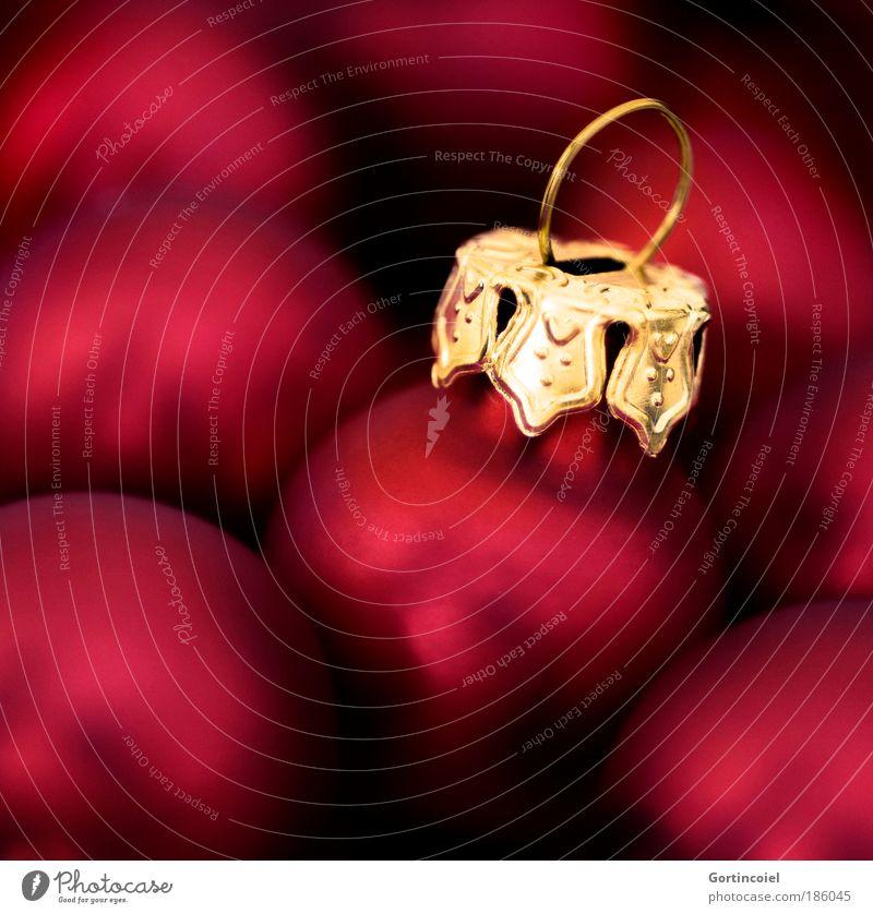 Kugelzeit Weihnachten & Advent schön rot Stil Feste & Feiern glänzend Design gold Dekoration & Verzierung leuchten Reichtum Christbaumkugel gemütlich Vorfreude
