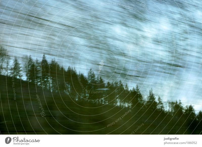 Autobahn Natur Himmel Baum Ferien & Urlaub & Reisen Straße Wald dunkel Bewegung Landschaft Umwelt Verkehr Geschwindigkeit fahren Dynamik Autofahren