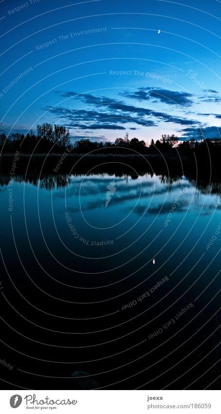 Mondtag Natur Landschaft Himmel Wolken Schönes Wetter Seeufer Teich kalt natürlich blau Kraft Gelassenheit ruhig Einsamkeit Erholung Hoffnung Horizont Umwelt