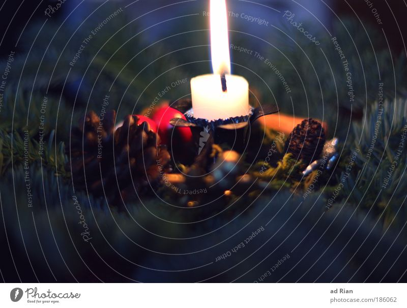 Glaedelig jul Weihnachten & Advent Erholung ruhig Winter Wärme Religion & Glaube Glück Stimmung einfach Kerze Kitsch Wunsch Duft harmonisch Vorfreude Schleife