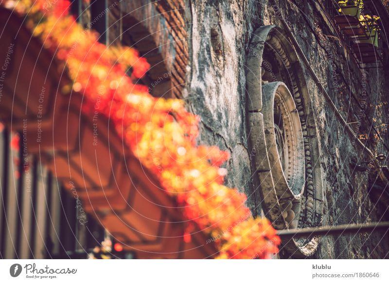Detailansicht der typischen städtischen sizilianischen Dekoration Dekoration & Verzierung Kunst Pflanze Blume Kirche Gebäude Architektur Balkon Ornament alt
