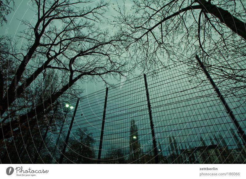 Spocht Stadt Baum dunkel Park Freizeit & Hobby Ast Skyline Zaun Baumstamm Zweig Gitter Justizvollzugsanstalt November Fußballplatz Flutlicht Pferch