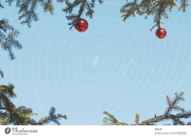 ADVENTSKRANZ Feste & Feiern Natur Luft Himmel Wolkenloser Himmel Winter Schönes Wetter glänzend hängen blau rot Stimmung Tradition Weihnachten & Advent