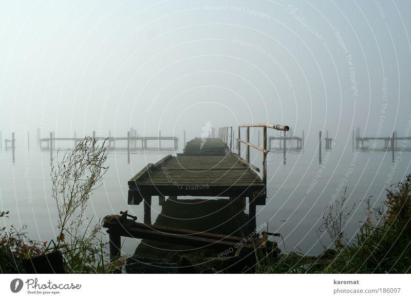 Brücke im Bodden alt Einsamkeit Landschaft Herbst Holz grau Küste Nebel Insel kaputt trist Trauer verfallen Geländer Ostsee