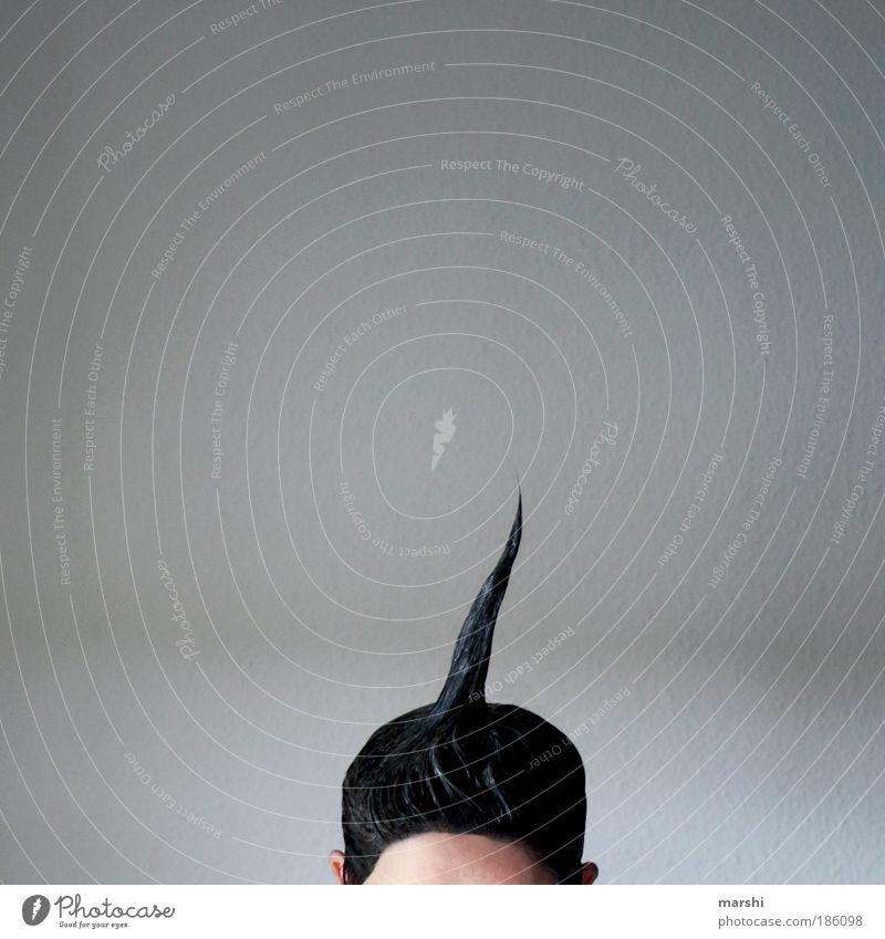 Einhorn schön Haare & Frisuren Mensch maskulin feminin Frau Erwachsene Mann Kopf 1 schwarzhaarig Gefühle Spitze tönung Stirn Gel Strukturen & Formen Kontakt