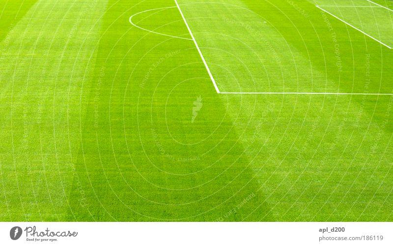 Golf Natur weiß grün Sommer Freude Umwelt Wiese Spielen Gras Linie Zufriedenheit Freizeit & Hobby Fußball ästhetisch authentisch Sport