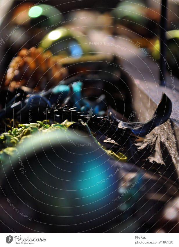Advent in fremden Farben Weihnachten & Advent schön grün blau Blatt kalt Holz Stimmung braun orange glänzend Dekoration & Verzierung einzigartig Kunststoff