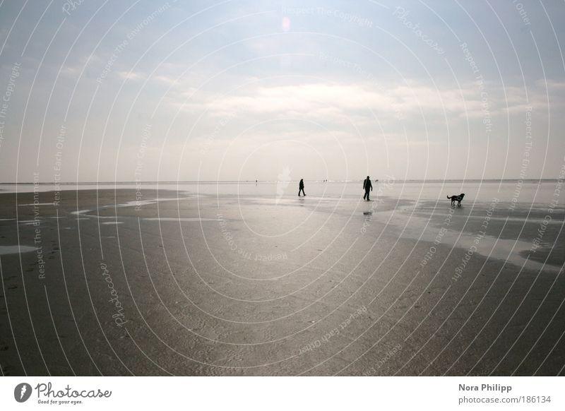 als das meer davon ging Mensch Natur Wasser Ferien & Urlaub & Reisen Meer Strand Wolken ruhig Ferne Umwelt Landschaft Freiheit Sand Küste Paar Freundschaft