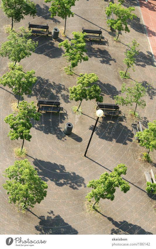 geordnet Baum Stadt ruhig Lampe Luftaufnahme Park Vogelperspektive Ordnung Platz Pause Bank Pflanze Beleuchtung Perspektive Entwicklung künstlich