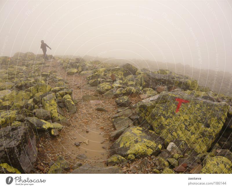 Running Woman Bergsteigen wandern Fußweg Weg Abenteuer Freiheit Berge u. Gebirge Klettern Landschaft Urelemente Erde Wasser schlechtes Wetter Wind Sturm Nebel
