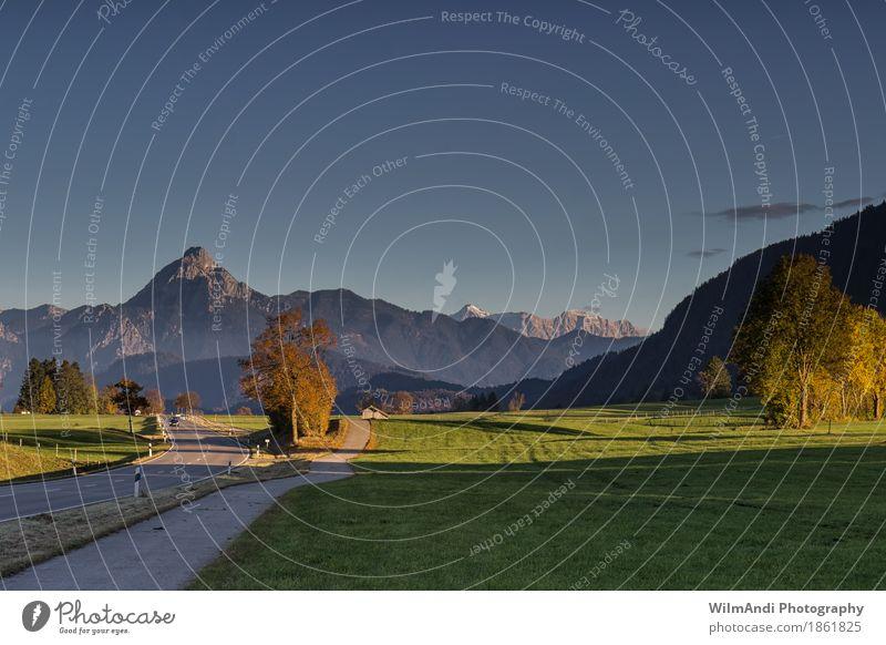 Herbst am Weissensee Natur blau grün Baum Landschaft Berge u. Gebirge Straße Wiese Gras wandern Schönes Wetter Gipfel Alpen Klettern Wolkenloser Himmel