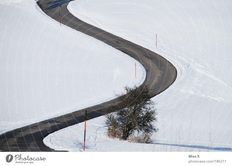 Slalom Natur Winter Umwelt Straße kalt Schnee Berge u. Gebirge Eis Wetter Klima Ausflug Verkehr gefährlich Sicherheit Sträucher Hügel