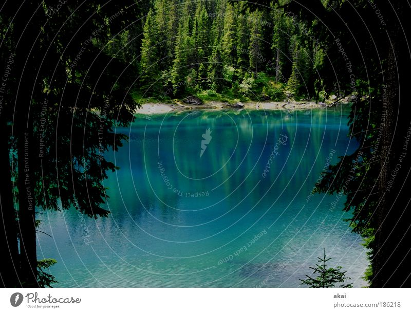 Karer See Natur Wasser Baum grün blau Ferien & Urlaub & Reisen Gefühle Landschaft Stimmung Umwelt Zukunft Schönes Wetter Umweltschutz Sehenswürdigkeit Gewässer