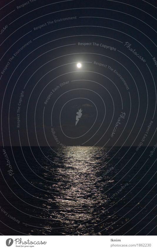 Mondschein am Meer Wasser Himmel Wolkenloser Himmel Nachthimmel Küste dunkel Farbfoto Gedeckte Farben Außenaufnahme Menschenleer Textfreiraum oben