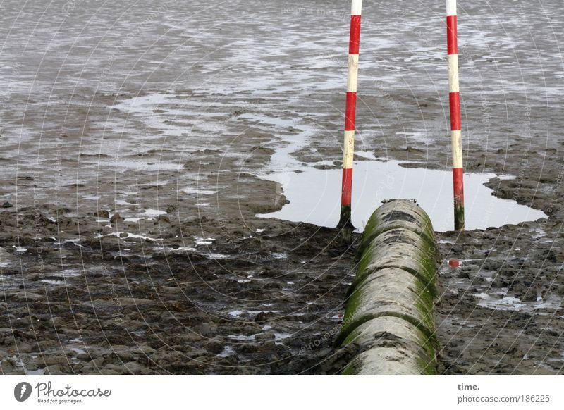 Nichtschwimmerbecken Strand Wasser Küste Schilder & Markierungen dreckig Umweltverschmutzung Eisenrohr Schlamm Schlick rot-weiß Warnfarbe Stab zwei Abfluss