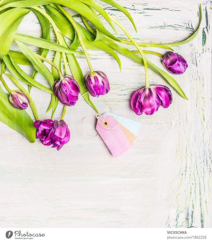 Lila Tulpen Blumenstrauß mit Kartonetiketten Natur Pflanze Blatt Freude Blüte Liebe Frühling Stil Feste & Feiern Design rosa Dekoration & Verzierung elegant
