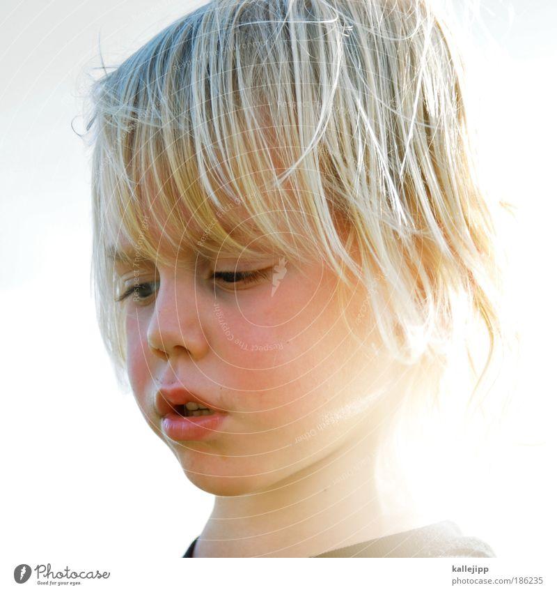 the summerwind Mensch Kind Himmel Gesicht Auge Leben Spielen Junge Umwelt Kopf Haare & Frisuren träumen Zufriedenheit Mund Freizeit & Hobby Kindheit