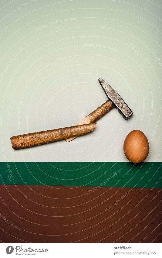 Immer feste druff Hammer Holz Metall Ei Rohes Ei gebrochen Bruch kaputt lustig stark braun grau grün selbstbewußt Kraft Willensstärke Wut Gewalt anstrengen