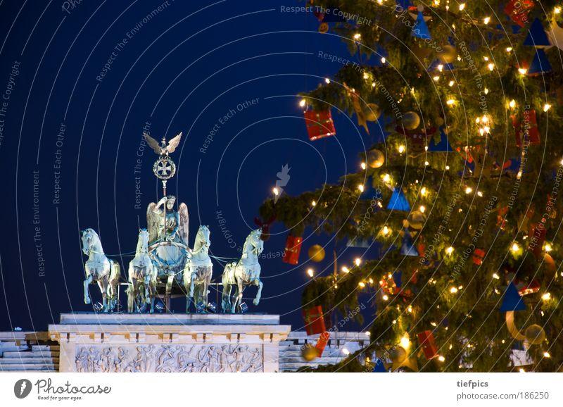 frohe weihnachten. Weihnachten & Advent Baum Winter Deutschland Berlin Religion & Glaube Pflanze Verkehr Beleuchtung Licht Geschenk Pferd Europa Frieden