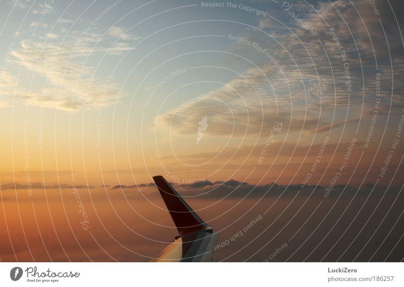 Fernweh Tomatensaft Ferien & Urlaub & Reisen Tourismus Sommerurlaub Sonne Flugzeug Passagierflugzeug im Flugzeug fliegen blau gelb rot Erholung Freiheit Wolken