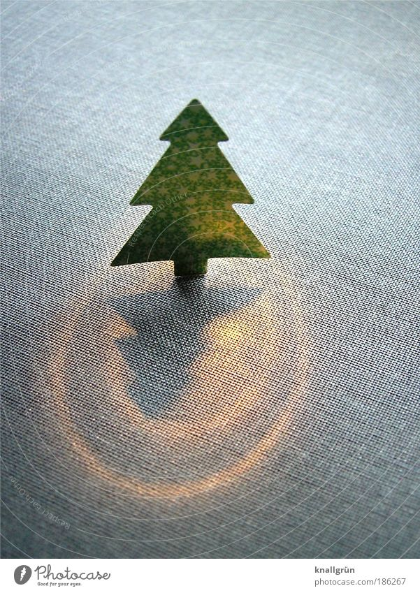 Oh du fröhliche... Weihnachten & Advent grün Baum Beleuchtung grau Stimmung Gefühle glänzend leuchten gold stehen Fröhlichkeit Feste & Feiern Wunsch