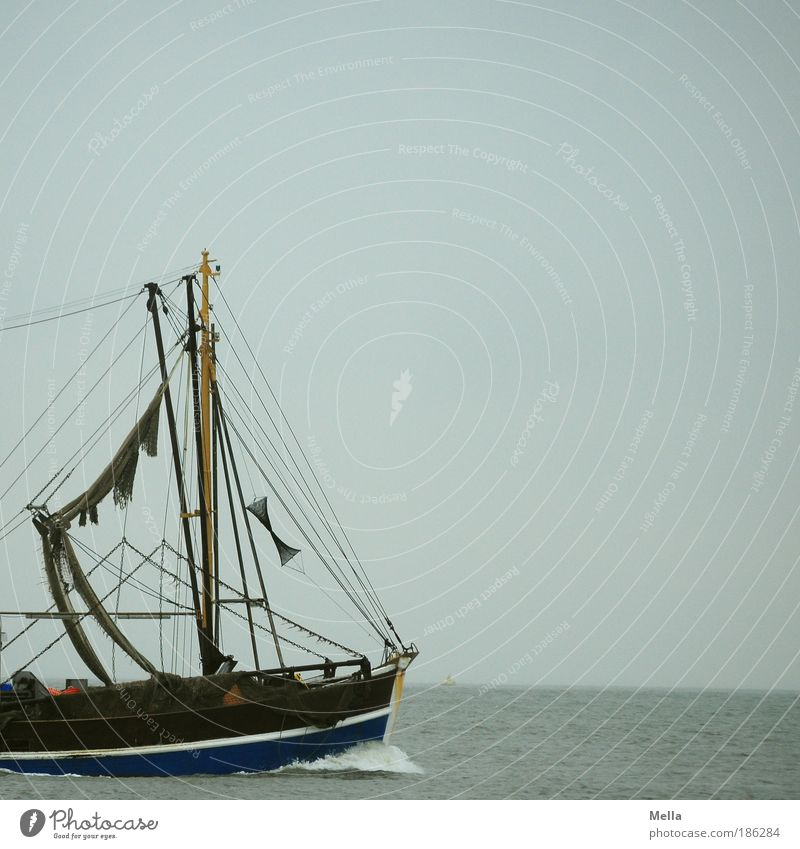 Nimm mich mit, Kapitän, auf die Reise! Himmel Wasser Ferien & Urlaub & Reisen Meer Ferne Freiheit Umwelt grau Bewegung Küste Ausflug frei Schwimmen & Baden fahren Sehnsucht Nordsee