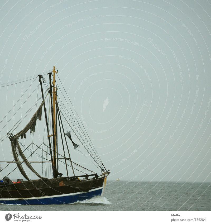 Nimm mich mit, Kapitän, auf die Reise! Ferien & Urlaub & Reisen Ausflug Ferne Freiheit Fischer Krabbenfischer Schiffsrumpf Umwelt Wasser Himmel Küste Nordsee